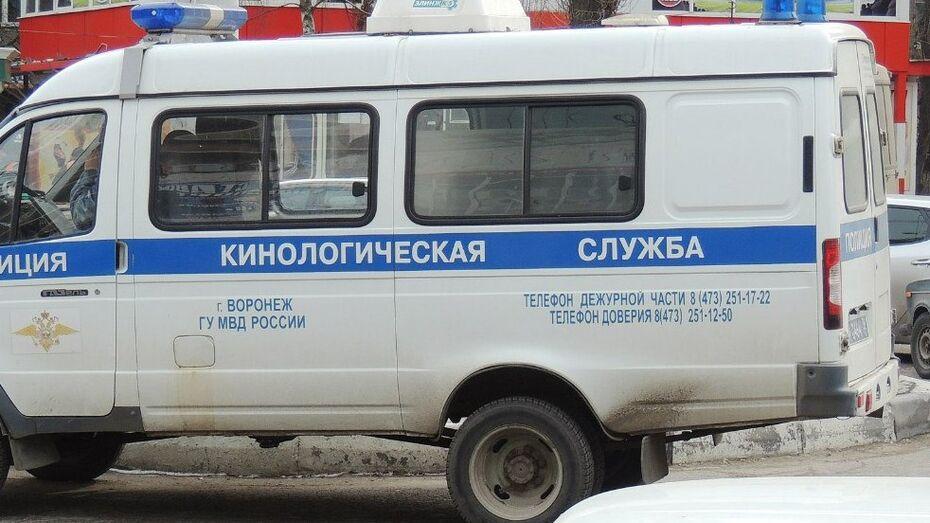В центре Воронежа спасатели нашли гранату