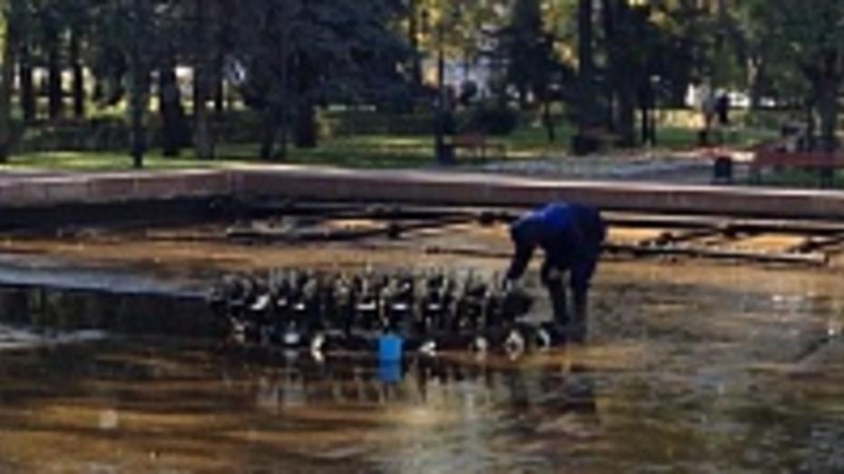 Воронежские фонтаны ушли в отпуск