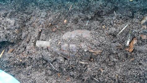 Под Рамонью талые воды вымыли боеприпасы
