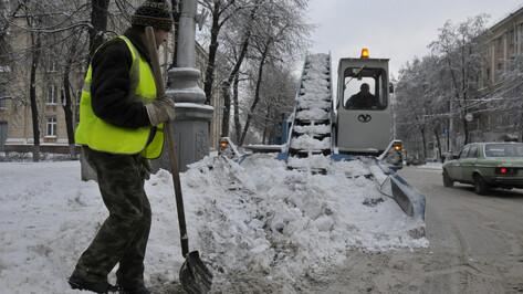 Из Воронежа вывезли 3,4 тыс кубометров снега в ночь на 29 декабря