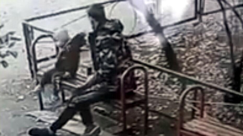 Избиение 2-летнего малыша в Воронеже попало на видео