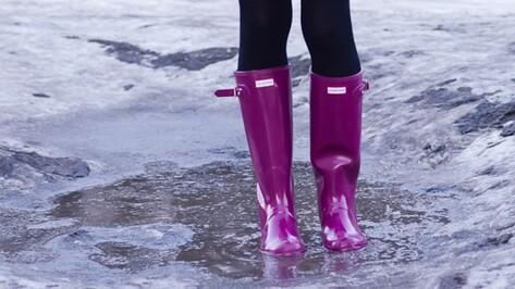 Теплая и дождливая погода сохранится в Воронеже на рабочей неделе