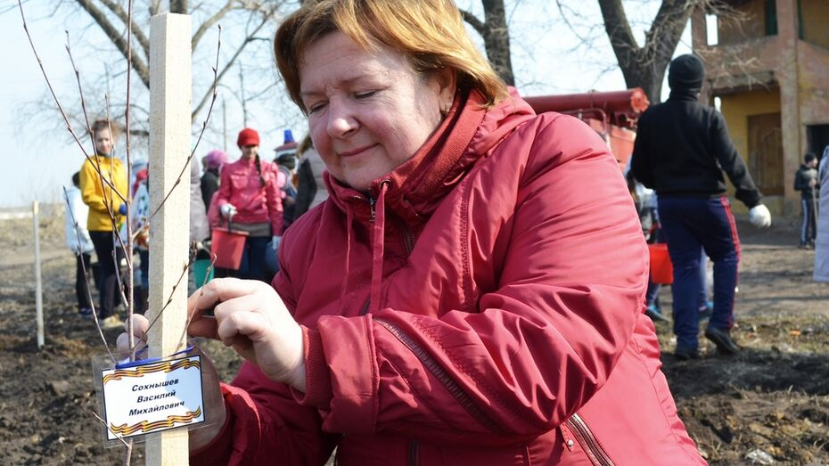 В лискинском селе разбили посвященный 70-летию Победы парк.
