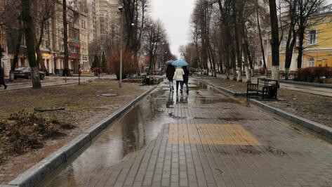 Синоптики спрогнозировали потепление и дожди к концу рабочей недели в Воронеже