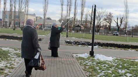 Таловские полицейские нашли разбивших фонари вандалов