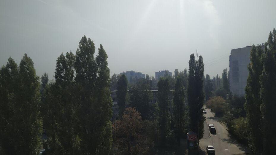 Мглу, опустившуюся утром на Воронеж, синоптики объяснили инверсией