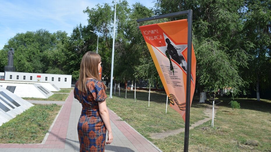 В Борисоглебске неизвестные повредили  8 баннеров на территории комплекса «Родина-Мать»