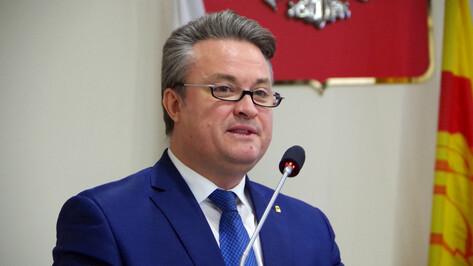 Новые школы и реконструкция парков. Что изменится в Воронеже в 2019 году