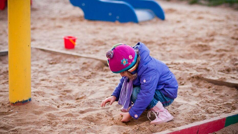 В Воронеже за год появилось более 1 тыс мест в государственно-частных детсадах