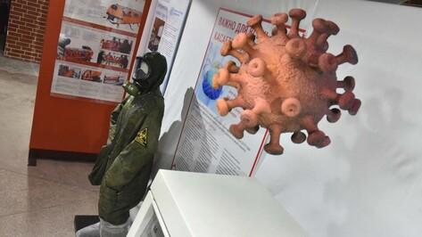 «Красная зона. 2020». Выставка о борьбе медиков с коронавирусом открылась в Воронеже