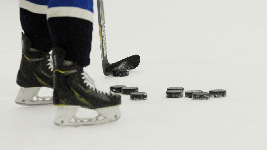 Воронежский «Буран» опубликовал список взятых у «Динамо» хоккеистов