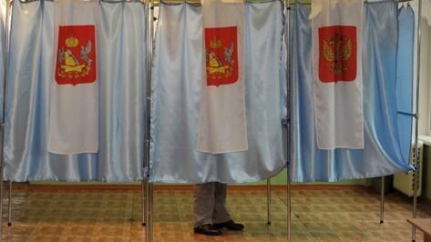 Десятки мандатов, сотни претендентов. Воронежские выборы-2015 в цифрах