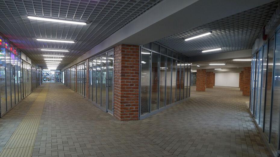 Воронежские власти начали поиск подрядчика для ремонта 2 подземных переходов