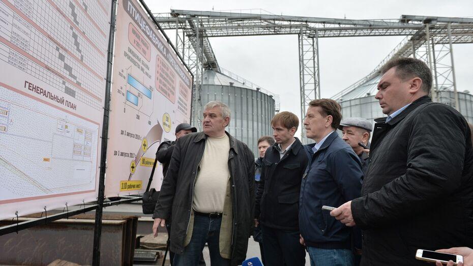 Крупнейшую в Воронежской области птицефабрику запустят 1 августа