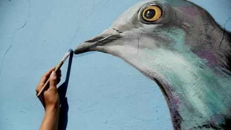 Бесплатная лекция «Авангардный Воронеж в рисунках граффити» пройдет 16 августа