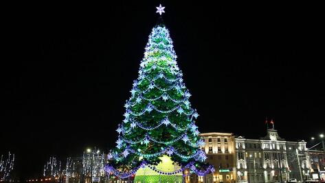 Главная новогодняя елка ненадолго засияла в Воронеже