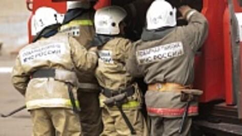 Воронежцев напугали десятки пожарных машин в Отрожке