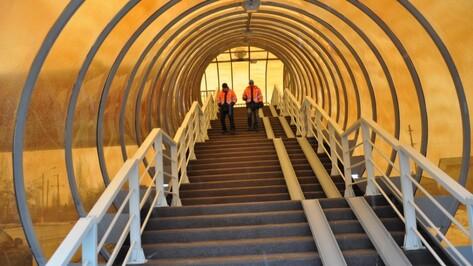 Надземный пешеходный переход в Советском районе Воронежа построят до 2018 года