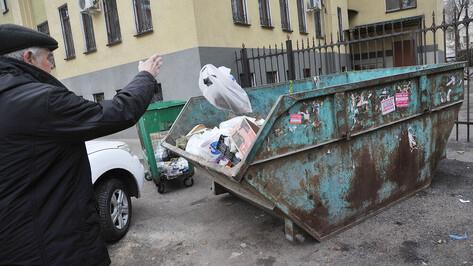 За наполняемостью мусорных контейнеров в Воронеже проследят по камерам
