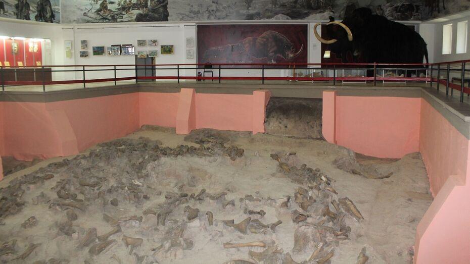 В хохольском селе Гремячье начнут археологические раскопки
