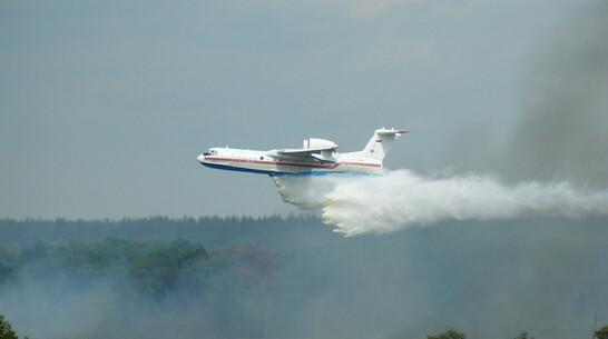 Очевидцы сняли на видео тушение пожара самолетом в Воронежской области