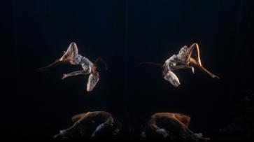 Седьмой воронежский Платоновфест завершился танцами в воздухе