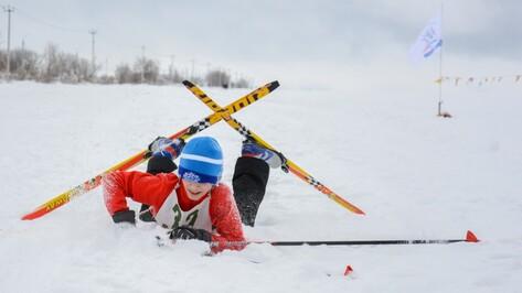 Воронежские власти оборудовали в городе 9 лыжных трасс