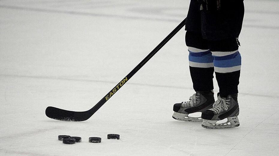 В Кантемировском районе подведели итоги конкурса «Лучшая хоккейная площадка 2015 года»