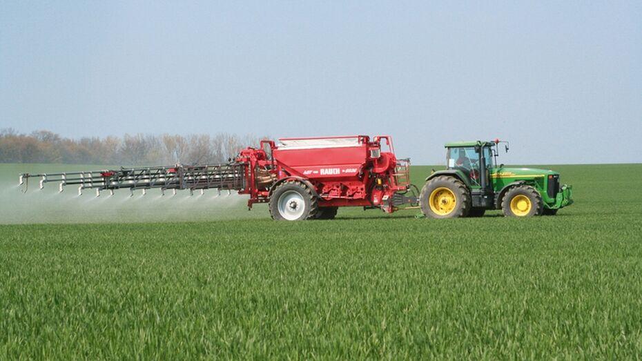 Богучарские земледельцы приступили к весенним полевым работам