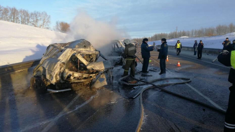 Полиция возбудила уголовное дело после ДТП с 8 погибшими в Воронежской области