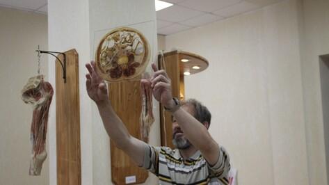 Воронежский анатомический музей разрешит посетителям прикоснуться к экспонатам