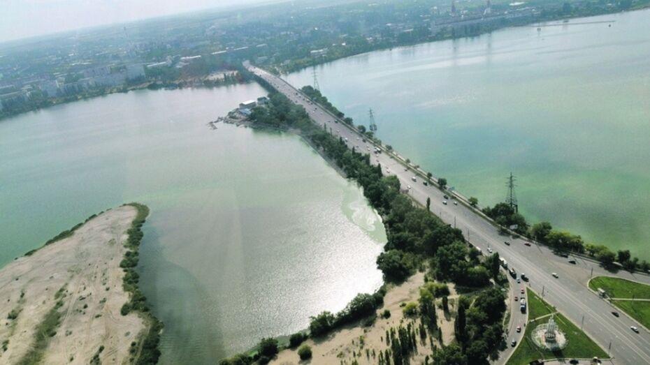 Власти притормозили проектирование парка «Петровский остров» в Воронеже