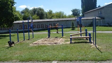 В Воронежской области открылись 250 площадок для подготовки к сдаче норм ГТО