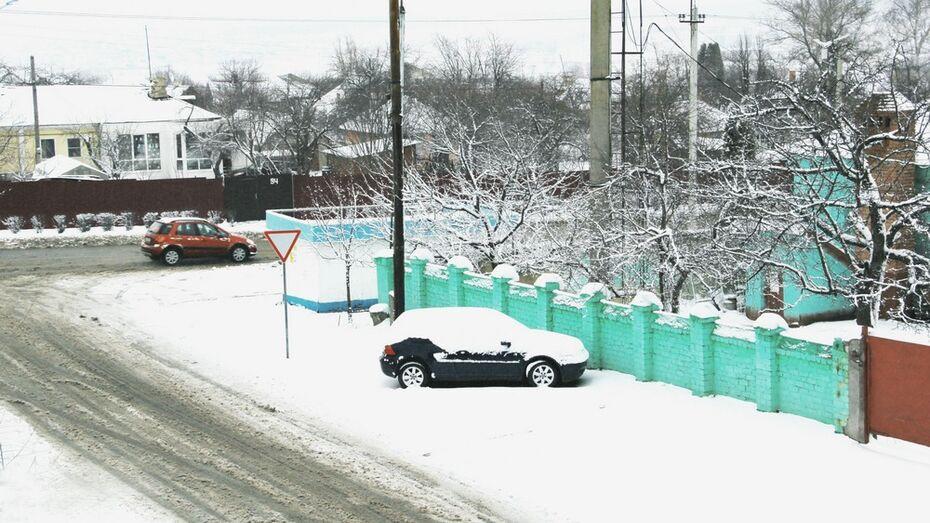 В Семилуках за ночь выпало 7 см снега