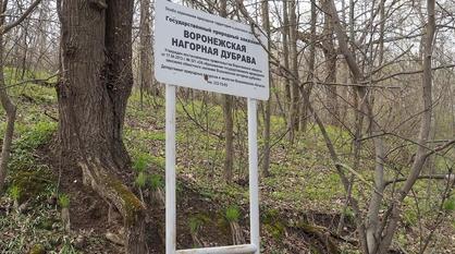 Историк Павел Попов пригласил воронежцев на пешую экскурсию