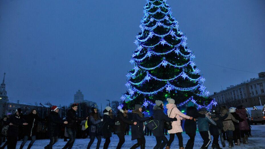 Мэрия опровергла сообщение о московской «прописке» главной елки Воронежа