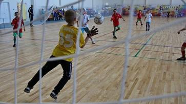 Российские и европейские футбольные детские тренеры соберутся в Воронеже