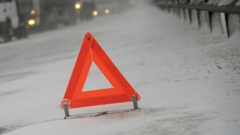 В Воронежской области Audi вылетела в кювет: пострадал водитель