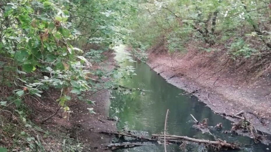 Специалисты подтвердили сброс загрязненных вод в реку Россошь в Воронежской области