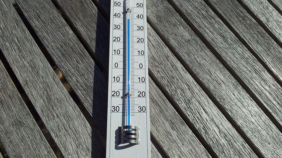 Воронежские спасатели предупредили о сильной жаре в регионе 13 августа