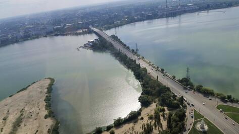 Воронежцам рекомендовали привыкать к выделенной полосе на Вогрэсовском мосту
