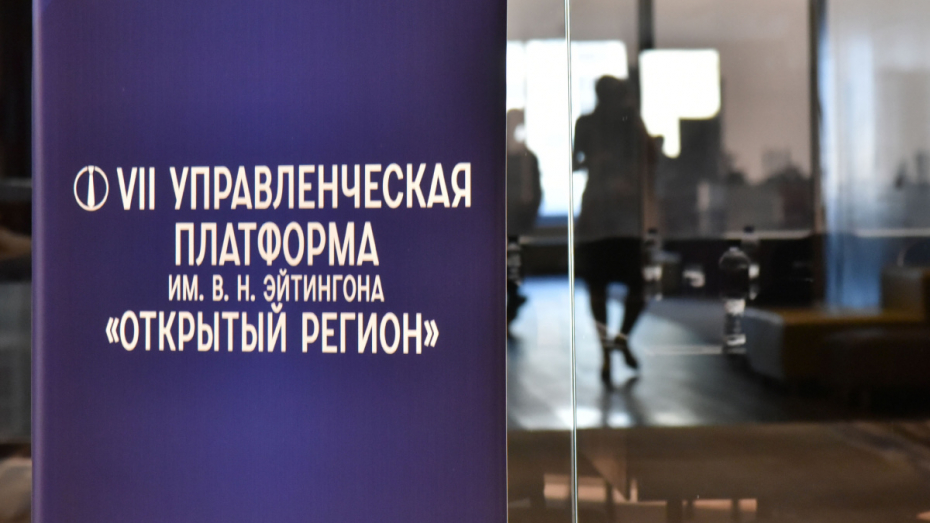 Открыть регион. Власти и эксперты нашли новые подходы к развитию Воронежской области