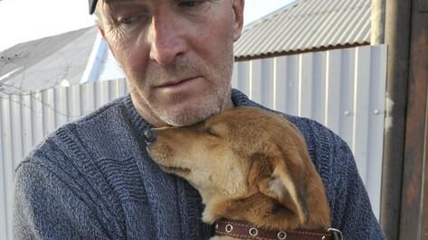Воронежский зоозащитник Юрий Шамарин: «Мы готовы помочь собакам из приюта «Право на жизнь», который выселяют»