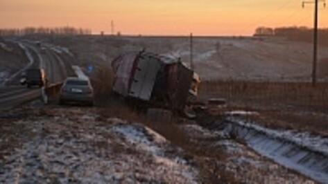 На Курской трассе в Нижнедевицком районе перевернулась фура