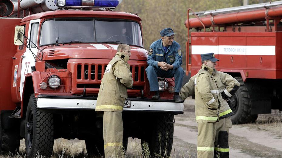 Мэрия: свалку на улице Землячки в Воронеже подожгли