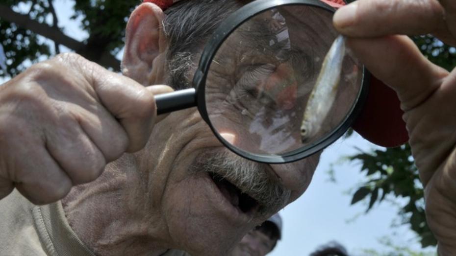 В Воронежской области мужчина сломал челюсть пенсионеру, который давал ему советы на рыбалке