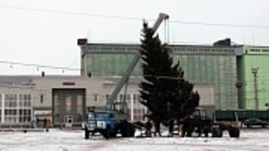 В Таловой установили главную елку района