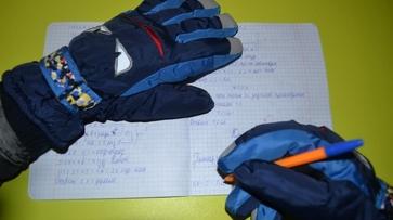 Холод в школах, грязные дворы и сортировка мусора: что обсуждают воронежцы в соцсетях