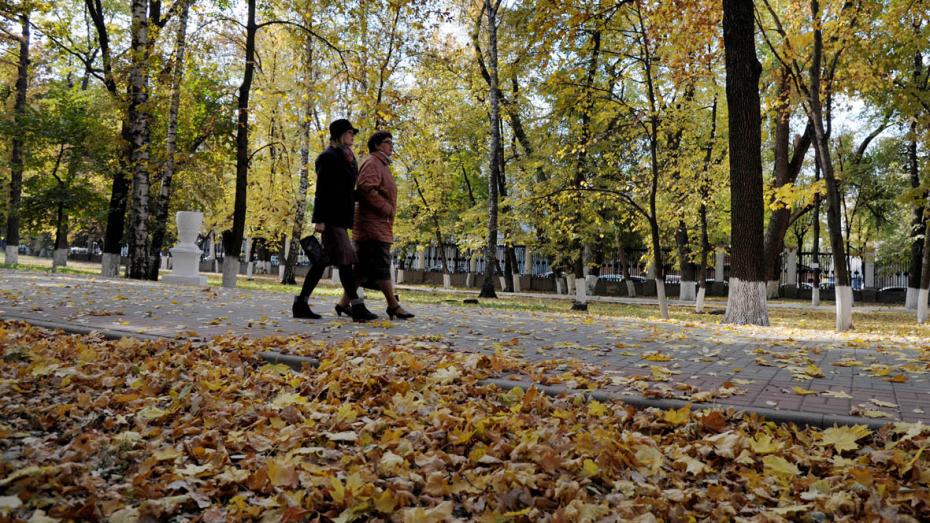 Обзор РИА «Воронеж». Какие законы вступают в силу в октябре-2020