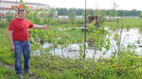 В Грибановке грунтовые воды затопили дома и огороды